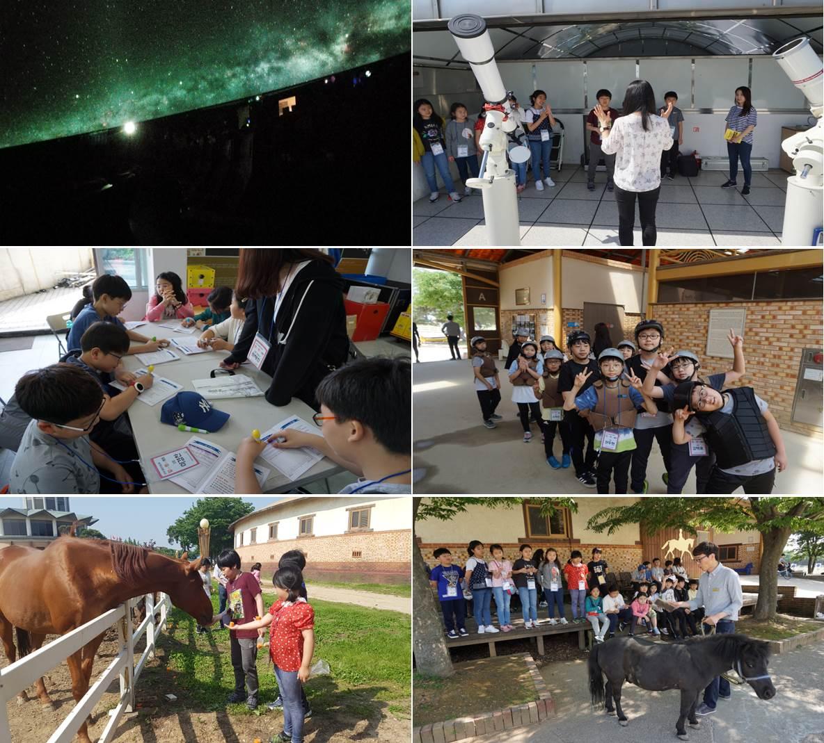 2018 융합인재교육 말(馬)썽(星)캠프